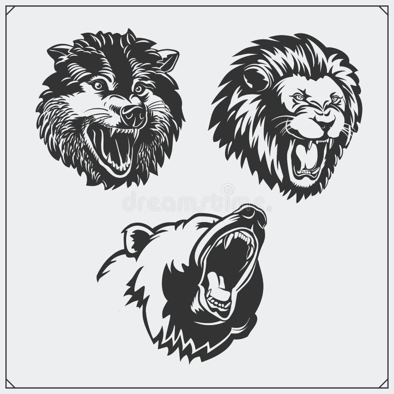 Ilustracje dzikie zwierzęta Niedźwiedź, lew i wilk, royalty ilustracja