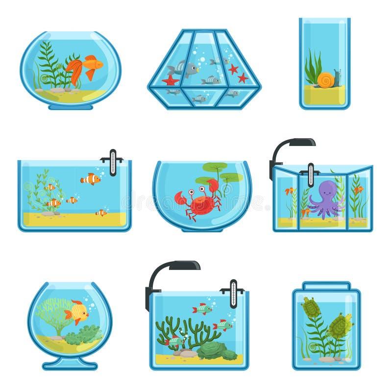 Ilustracje ustawiać różni akwaria z ryba i saltwater gili Indonesia wyspy lombok meno blisko dennego żółwia underwater światu ilustracja wektor