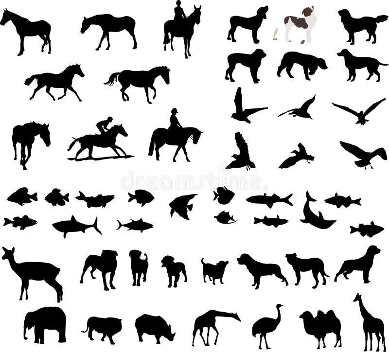 ilustracje zwierząt. ilustracji
