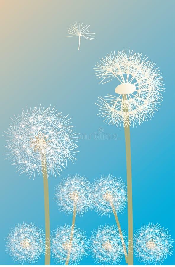ilustracyjny dandelion biel royalty ilustracja