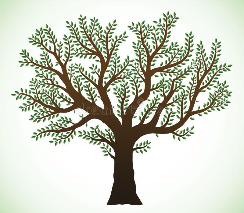 ilustracyjny drzewo royalty ilustracja