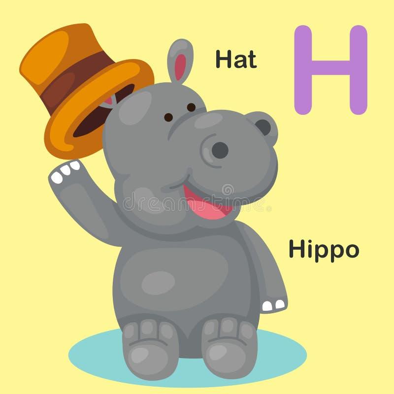 Ilustracyjny Odosobniony Zwierzęcy abecadło listu kapelusz, hipopotam royalty ilustracja