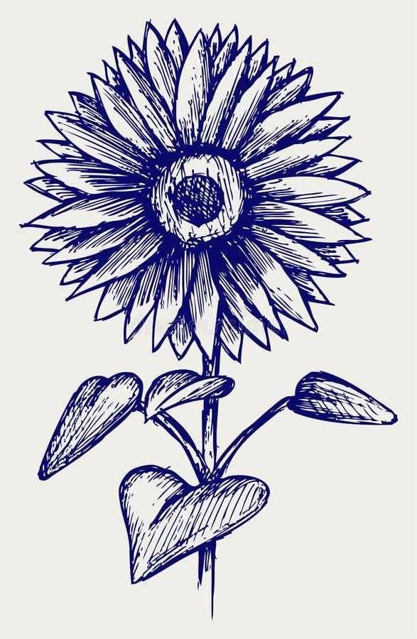 Ilustracyjny piękny słonecznik ilustracji