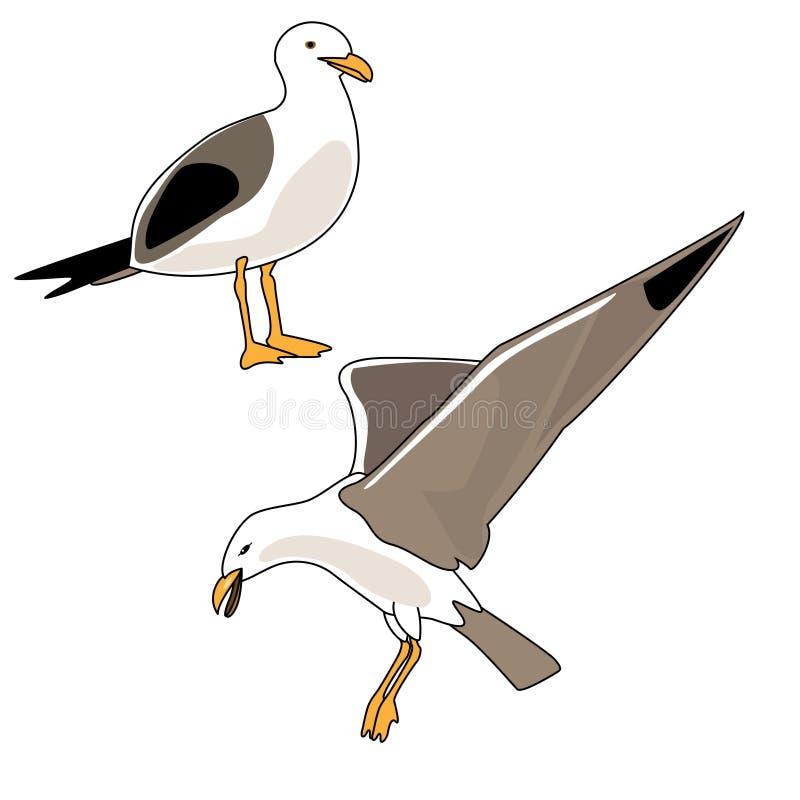 ilustracyjny seagull ilustracja wektor
