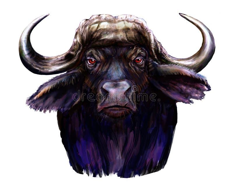 Ilustration africano del bufalo fotografie stock