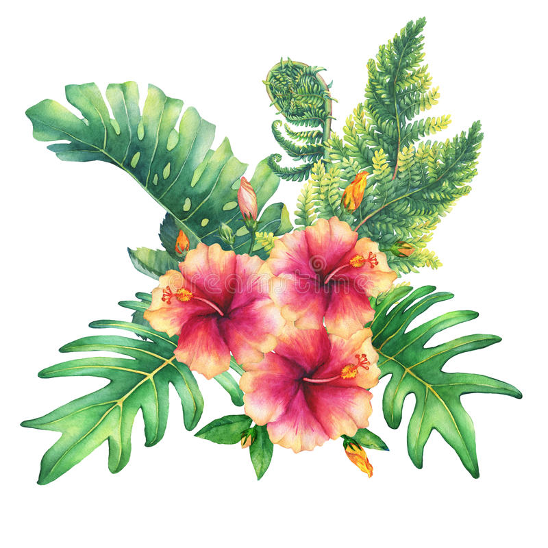 Ilustration of a bouquet with yellow-pink hibiscus flowers and tropical plants. Hand drawn watercolor painting on white background vector illustration