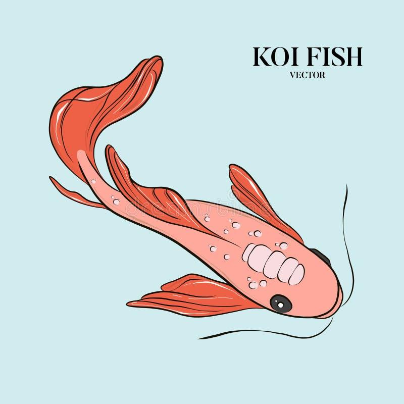 Ilustration dos peixes do koi do vetor Japonês, arte oriental chinesa do símbolo Inseto de propaganda, fundo da natureza Japão de ilustração do vetor