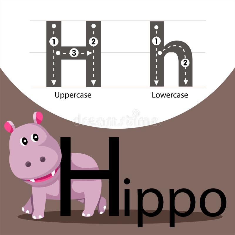 Ilustrator hipopotam z h chrzcielnicą royalty ilustracja