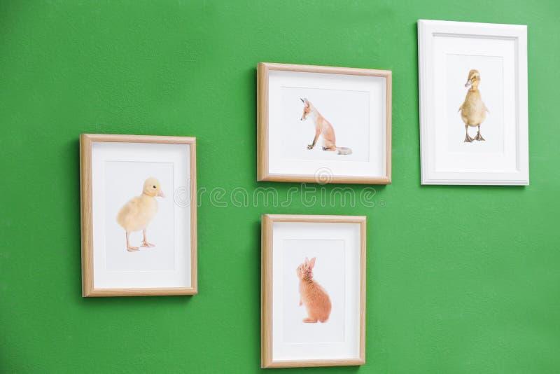 Imágenes de diversos animales del bebé fotos de archivo