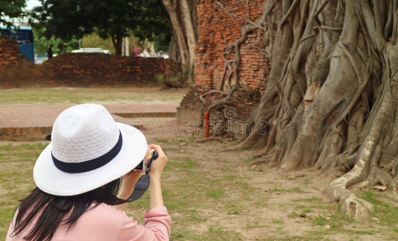 Imágenes que toman turísticas femeninas de la cabeza atrapada en raíces del árbol de Bodhi, Wat Mahathat Ancient Temple, Ayutthay fotos de archivo libres de regalías