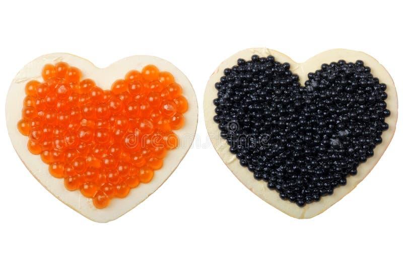 Imán con el caviar fotos de archivo