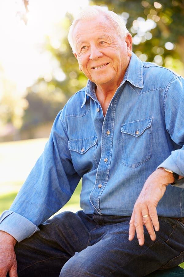 Im Freienportrait des lächelnden älteren Mannes stockbilder