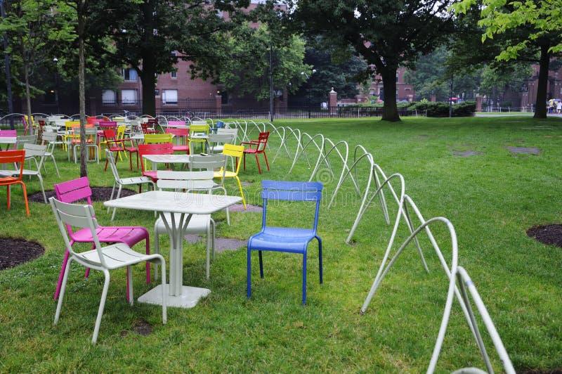 Im Freienrasen-Stühle Stockfotografie