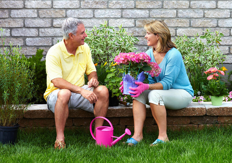 Im Garten arbeitende ältere Paare. lizenzfreies stockbild
