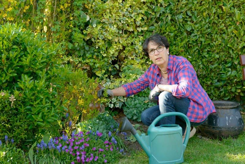 Im Garten arbeitende Frau die Blumen in ihrem schönen Garten lizenzfreie stockfotos