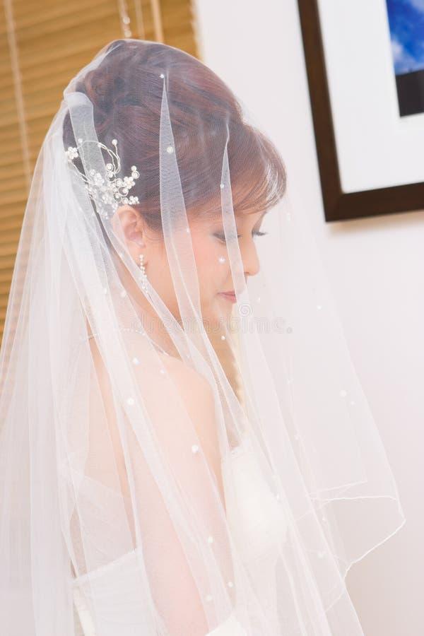 Im Schleier versteckt zu werden Braut, lizenzfreie stockfotografie