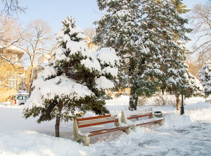 Im schneebedeckten Central Park auf Bulgarisch Pomorie, Winter 2017 stockfoto