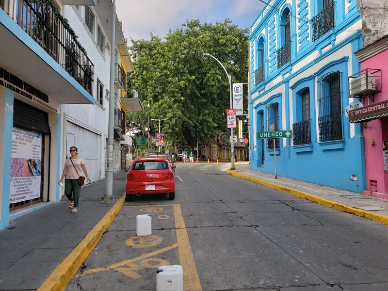 IM STADTZENTRUM GELEGENER Baum Bluehouse Villahermosa der Straße lizenzfreie stockbilder