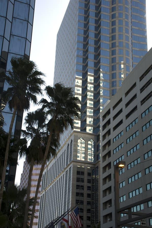 Im Stadtzentrum gelegenes Tampa Florida stockbilder