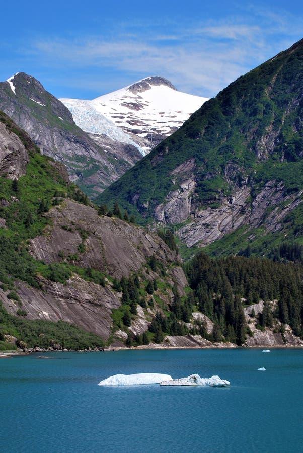 Im Tracy Arm-Fjord Alaska lizenzfreies stockbild