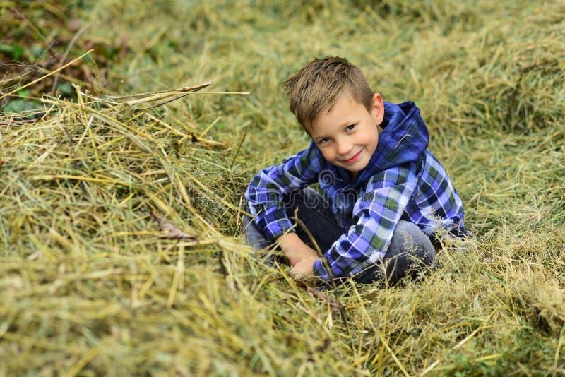 Im un muchacho de granja Niño pequeño en granero en granja El niño pequeño disfruta de días de fiesta de la granja del pueblo El  imagenes de archivo