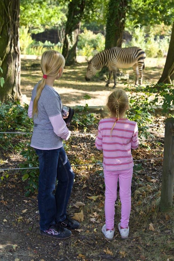 Im Zoo lizenzfreie stockbilder