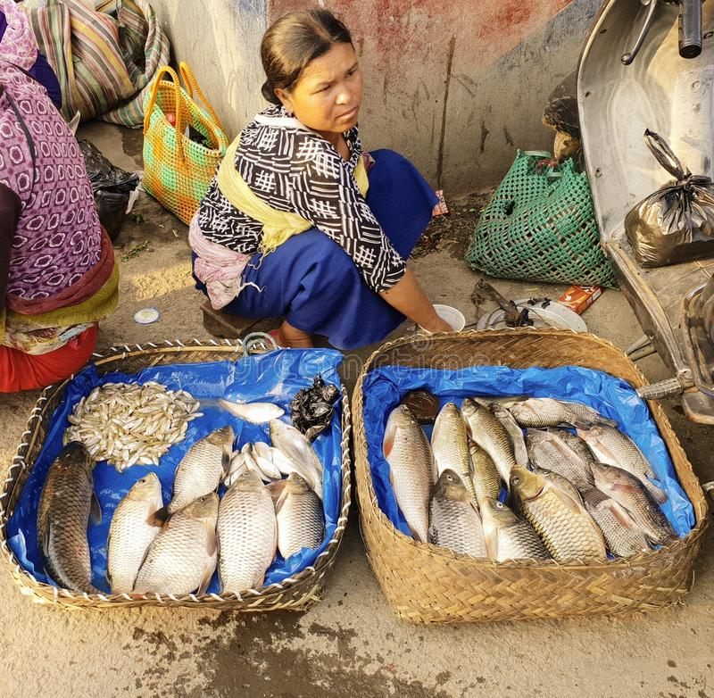 IMA市场在安菲曼尼普尔邦印度 免版税图库摄影