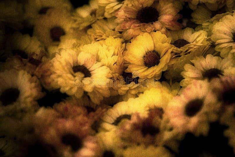 Image âgée des fleurs images libres de droits