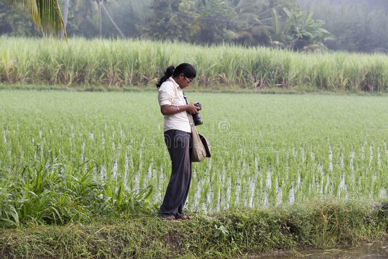 Image éditoriale documentaire Photographe indienne non identifiée de femme dans le domaine de riz dans Tamil Nadu photos stock