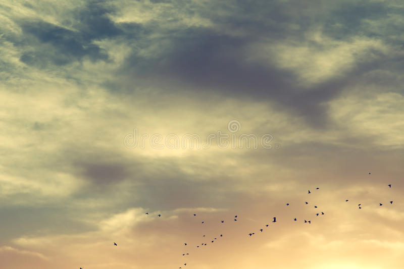 image of abstract sky background at sunrise royalty free stock photos