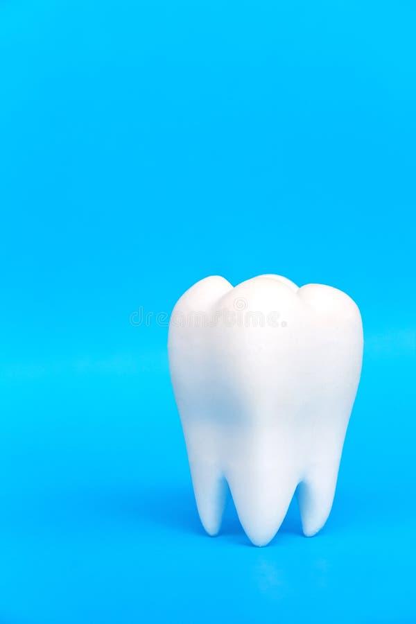 Image abstraite de molaire photo libre de droits