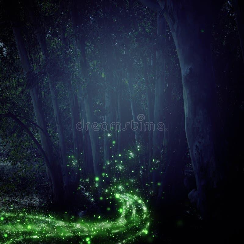 Image abstraite et magique du vol de luciole dans le concept de conte de fées de forêt de nuit illustration de vecteur