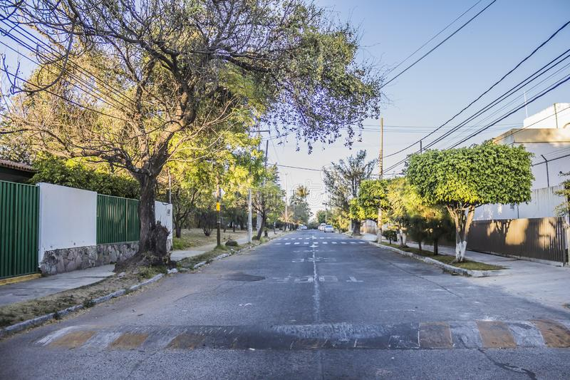 Image of an asphalt street with sidewalks, trees and electric cables. On a sunny day in Guadalajara Jalisco Mexico stock photo