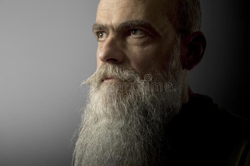 a bearded mature male portrait royalty free stock images