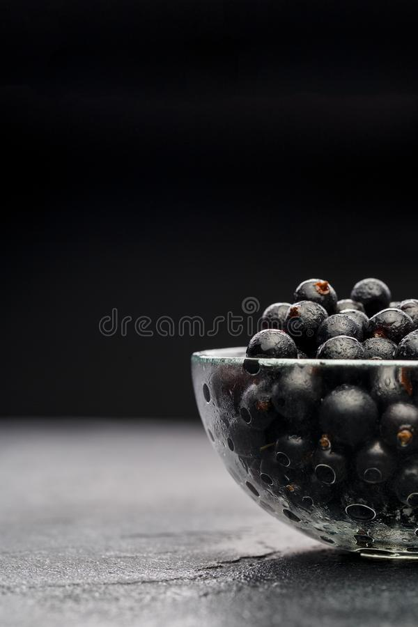 Image of black currant in glass transparent cup stock images