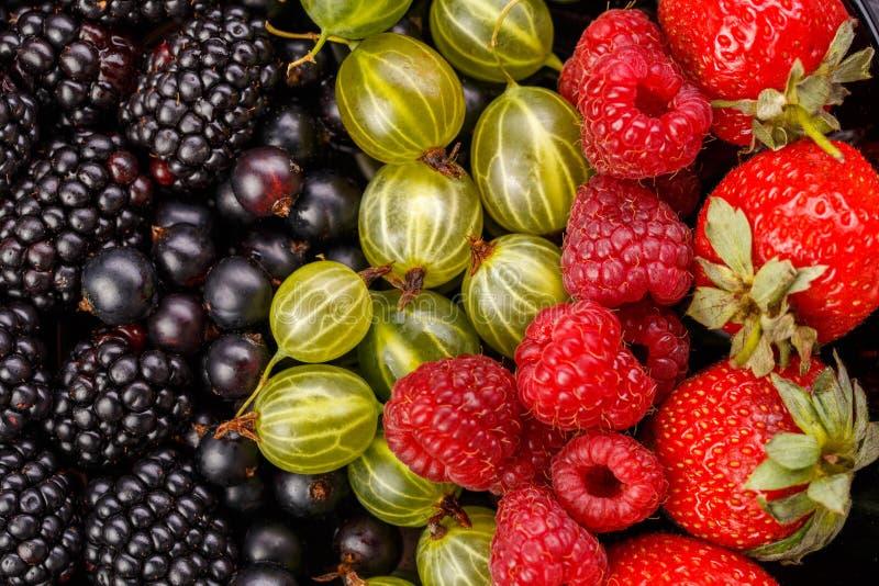 Image of blackberry, strawberry, raspberry, gooseberry, black currant royalty free stock photos