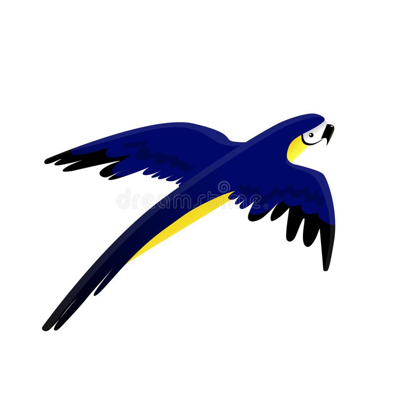 Image bleu-jaune lumineuse volante de vecteur d'ara de perroquet illustration de vecteur
