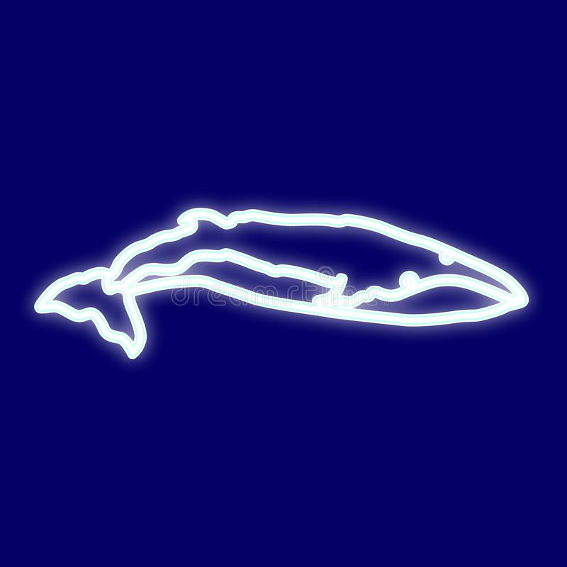 Image of blue whale. vector illustration