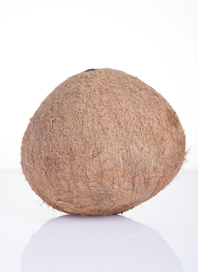 Image of coconut on white background royalty free stock photography