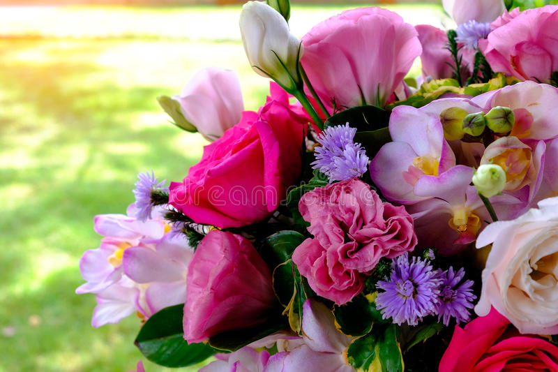 The image of colorful orchid flower bouquet with blur background stock image