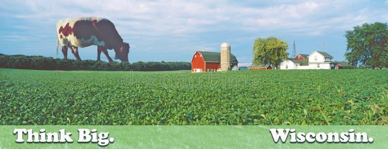 Image composée d'une vache géante frôlant derrière une ferme éloignée avec un silo et une grange images stock