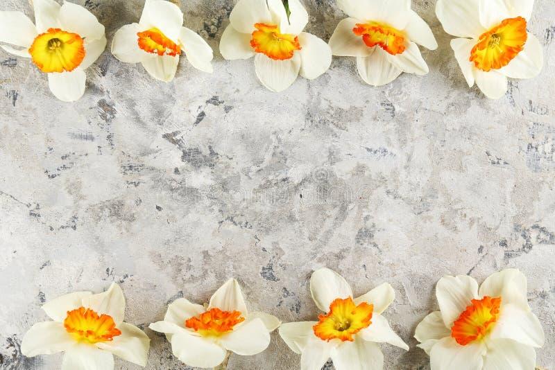 Image conceptuelle d'humeur de ressort Fleurs saisonni?res sur le fond lumineux image libre de droits