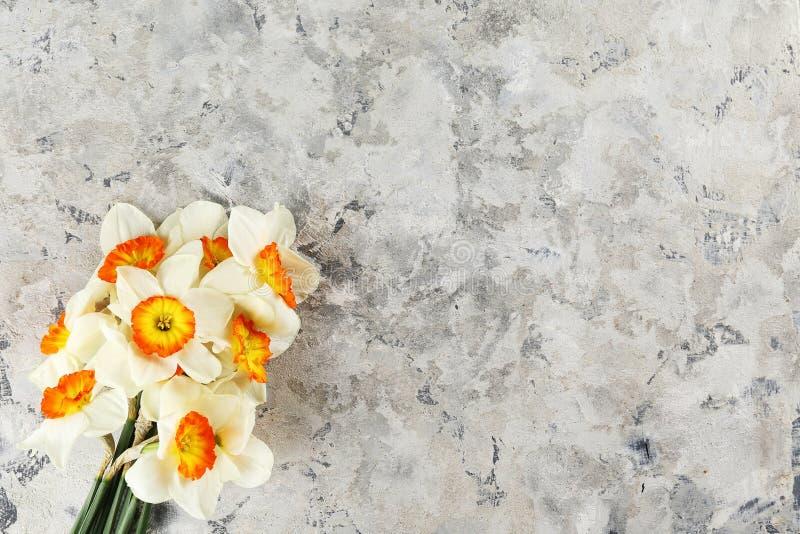 Image conceptuelle d'humeur de ressort Fleurs saisonni?res sur le fond lumineux photographie stock libre de droits