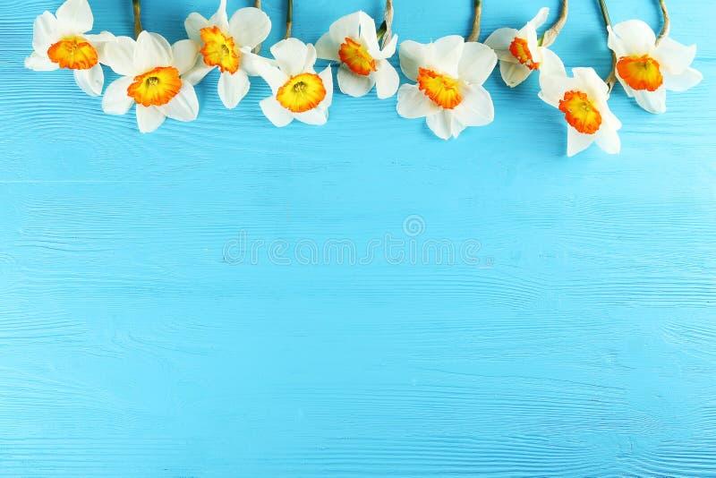 Image conceptuelle d'humeur de ressort Fleurs saisonni?res sur le fond lumineux photos stock
