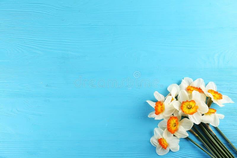 Image conceptuelle d'humeur de ressort Fleurs saisonni?res sur le fond lumineux photos libres de droits