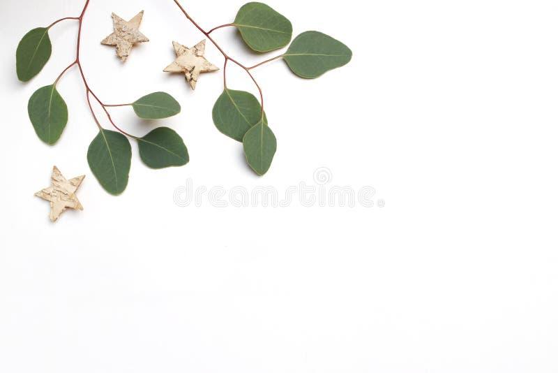 Image courante dénommée de fête de Noël Composition florale en cadre faite en feuilles, branches et bouleau d'eucalyptus en bois photos libres de droits