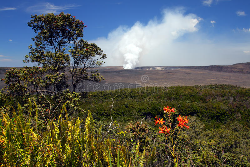 Image courante des volcans parc national, Etats-Unis d'Hawaï image stock
