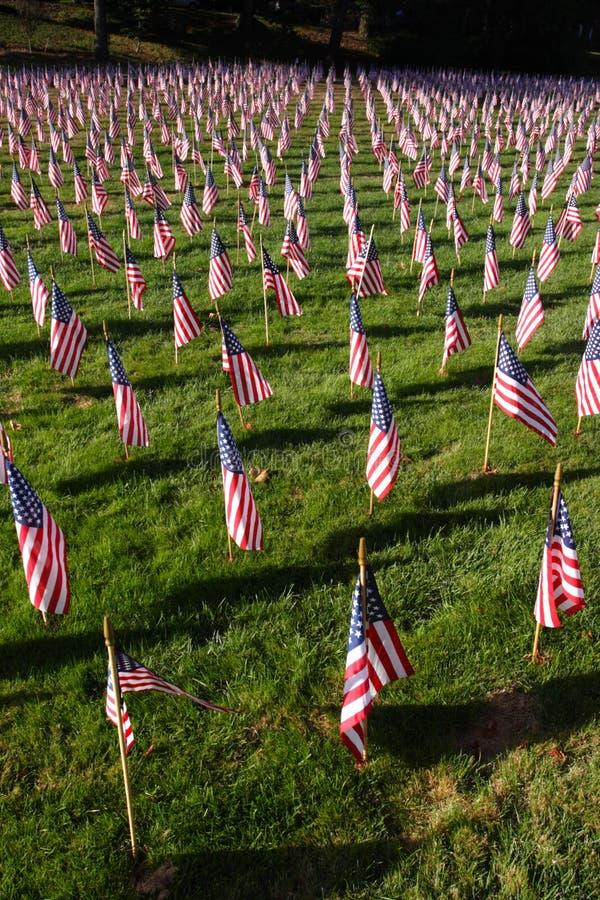 Image courante du champ des drapeaux américains photos libres de droits
