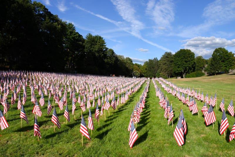 Image courante du champ des drapeaux américains image libre de droits