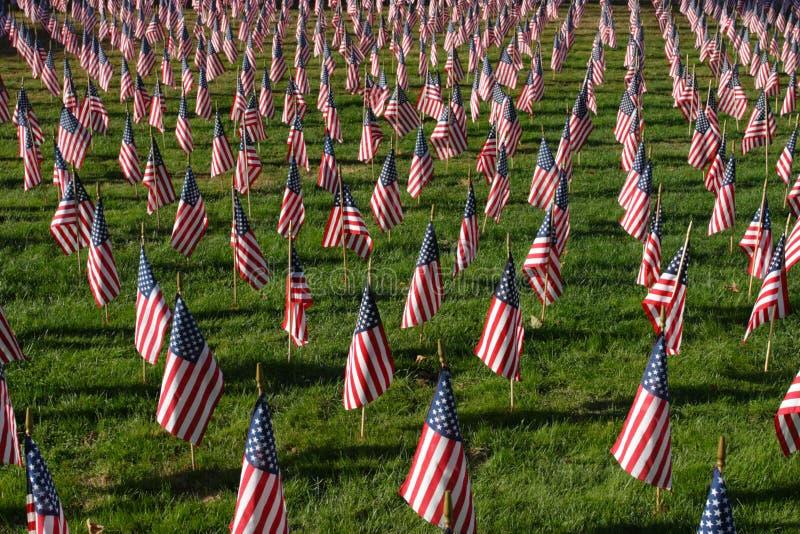 Image courante du champ des drapeaux américains image stock